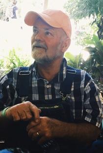 Paul L Ingalls