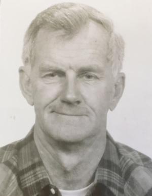 Herbert E. Traub