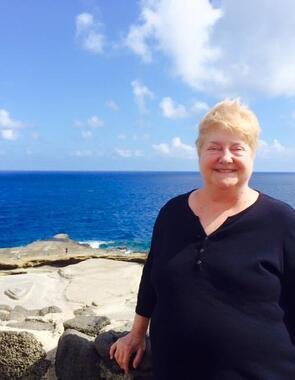 Cheryl Ann Shrout