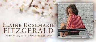 ELAINE ROSEMARIE  FITZGERALD