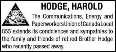 Harold  Hodge