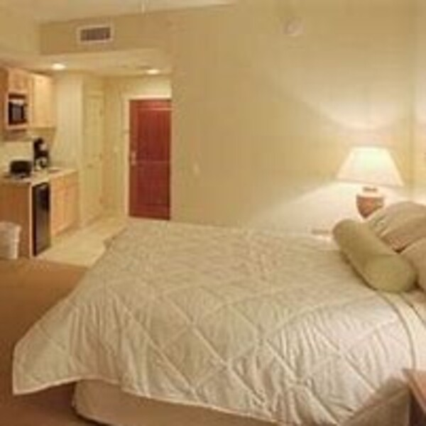 Apartments For Rent In Miami Lakes: Apartments/Condos For Rent