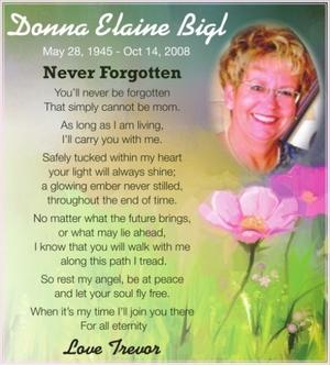 Donna Elaine  BIGL