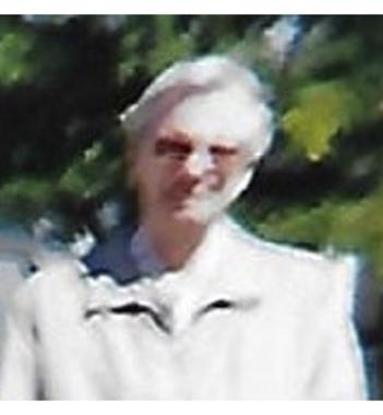 Robert  Hickson