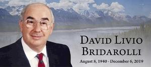 David  BRIDAROLLI